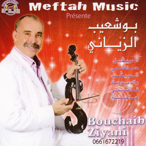 bouchaib ziani 2008